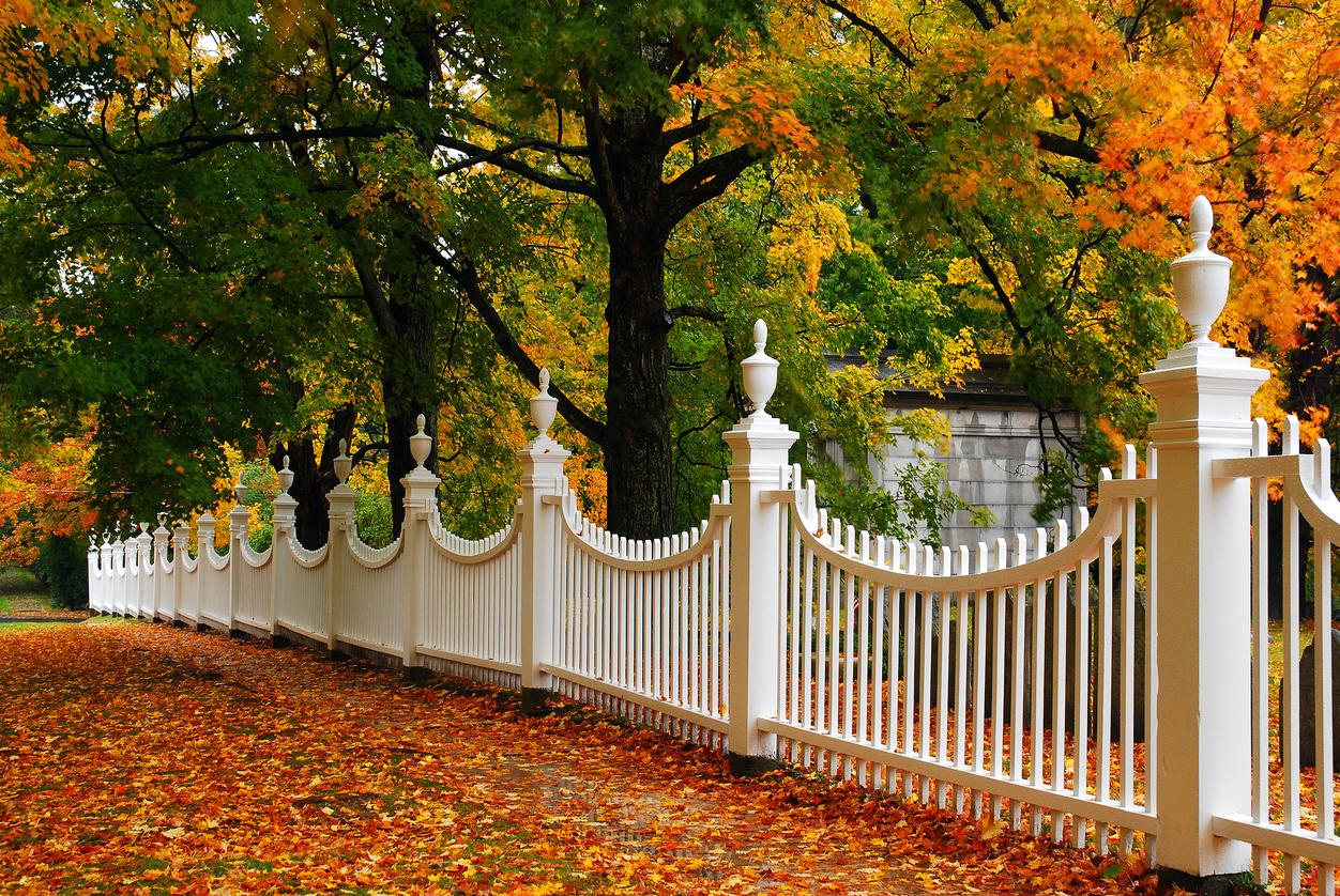custom fence builder in Biloxi